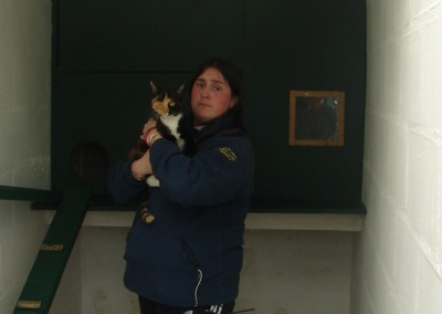 b cattery   003