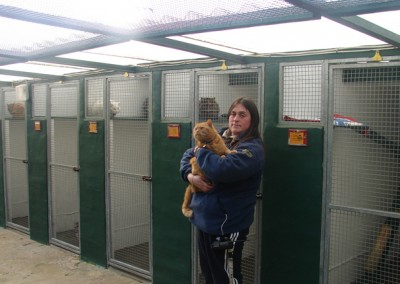 cattery  03.04.09 010