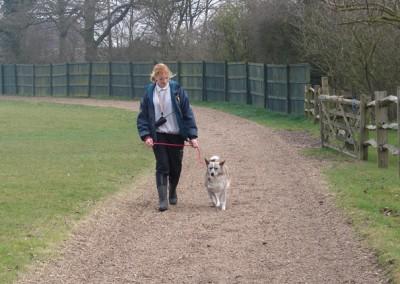 dog walking 045 (3)